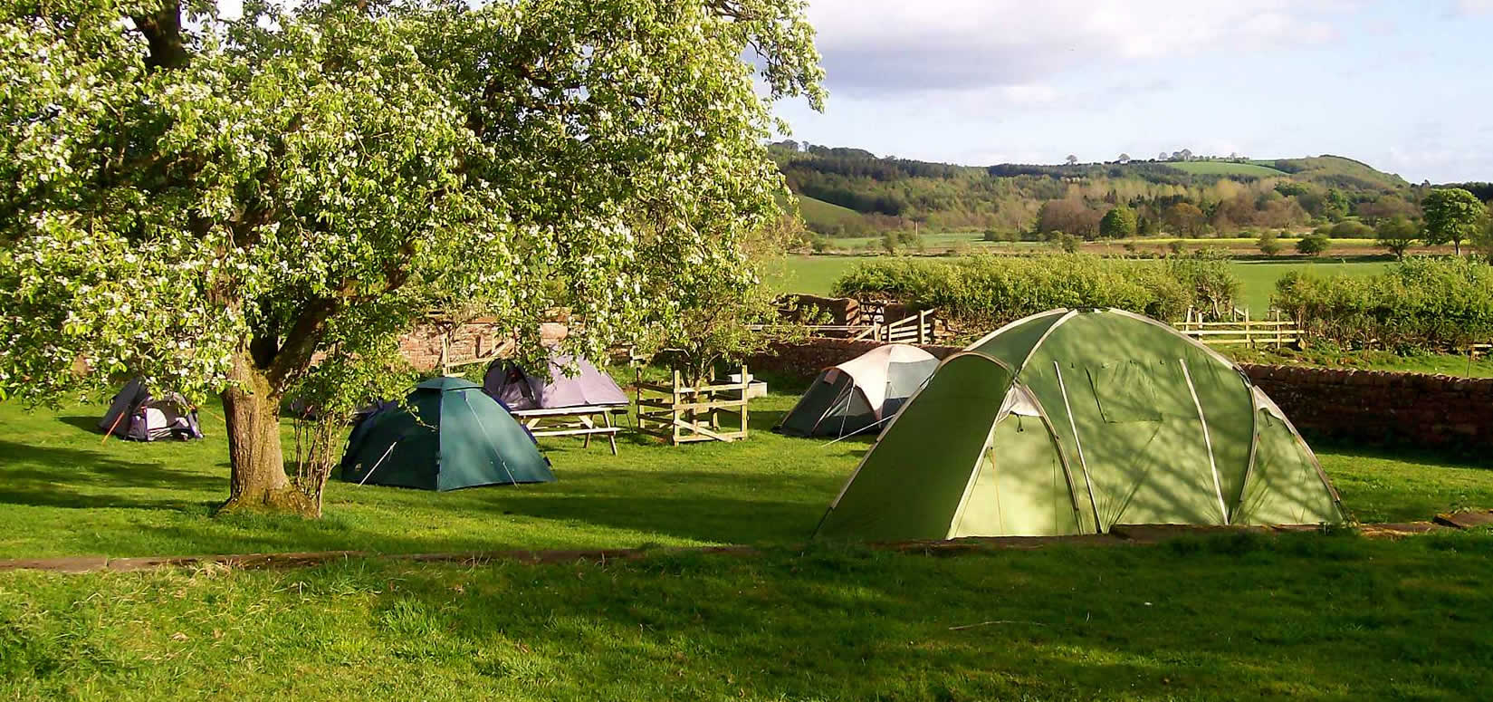 camping-pitches